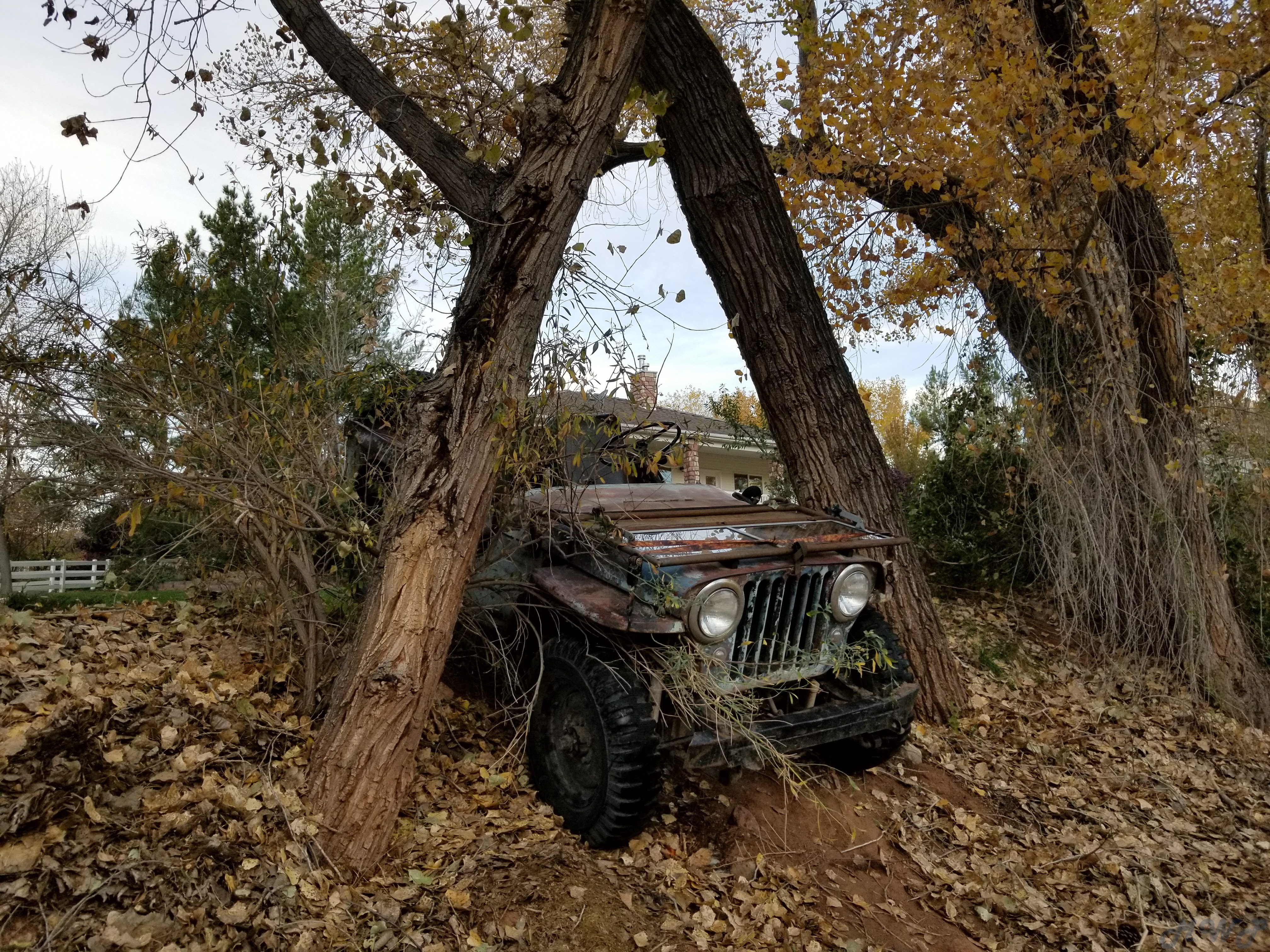 How Can I Look Up My Jeep Build Status